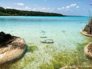Agua cristalina del cenote Cocalitos Yucatan