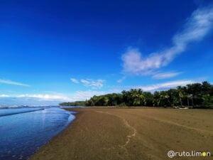 Playa con cocoteros, Playa Uvita