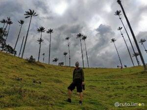 Victor admirando las palmas de cerda del valle del Cocora