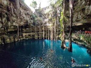 Bañandose en el Cenote Oxmán. Cenotes de Yucatán